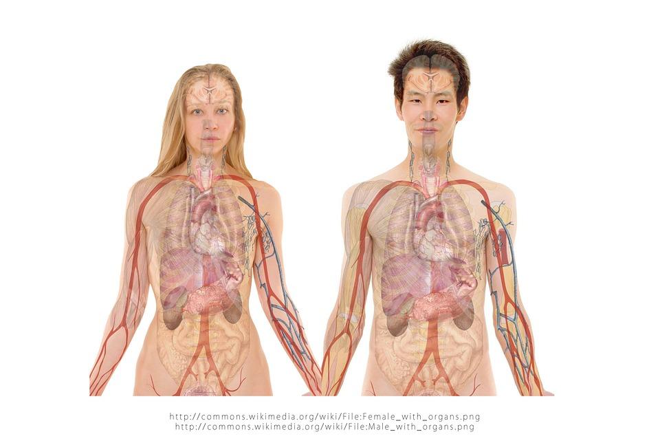 3 Gejala Sakit Pankreas yang Tidak Boleh Diabaikan