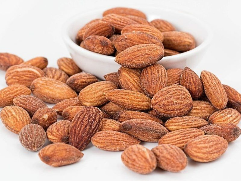 Pohon Kacang Almond