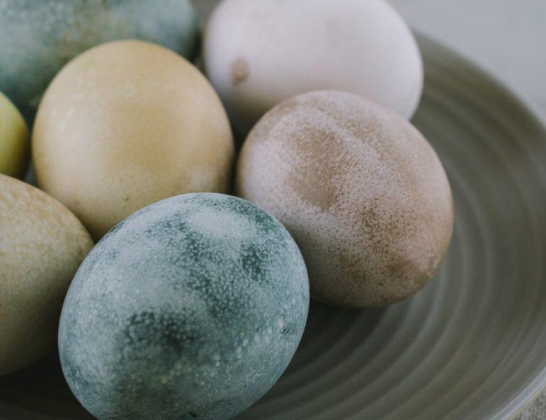 Cara Meningkatkan Produksi Telur Bebek