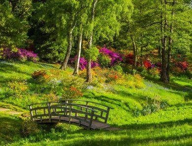 Cara Membuat Batu Alam Untuk Taman Sederhana Tapi Cantik